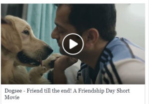 Dogsee chew friendship day
