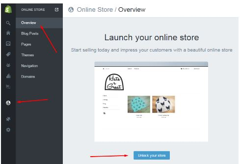earn money through Setting up an ecommerce store