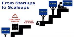 scaleups startup