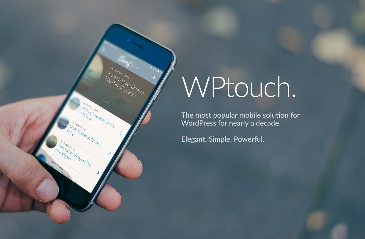 WP Touch Plugin